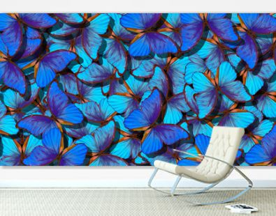 Blue abstract texture background. Butterfly Morpho. Wings of a butterfly Morpho. Flight of bright blue butterflies abstract background.