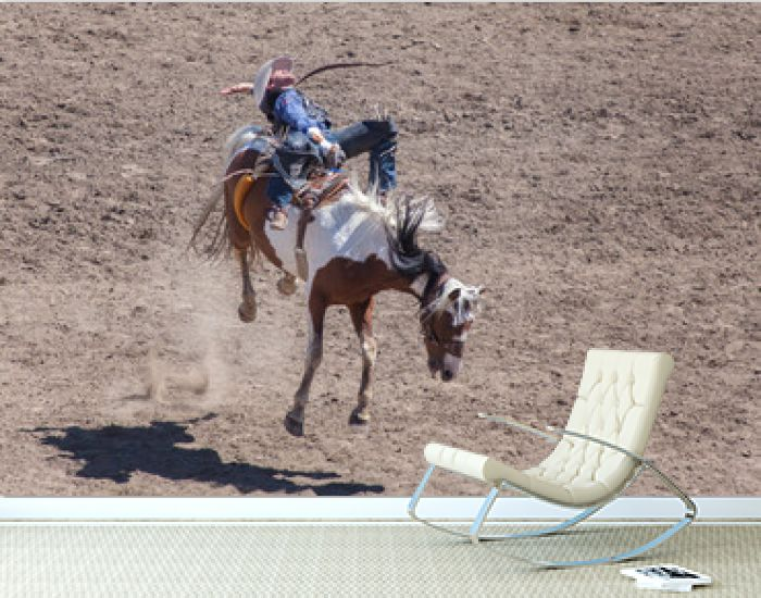 Rodeo Action Bucking Bronco