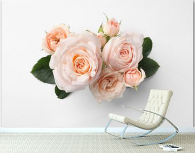 Beautiful roses on white background, top view