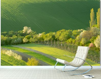 Field waves with blossoming trees in the spring, South Moravia, Czech Republic. Paradaise, romantic view