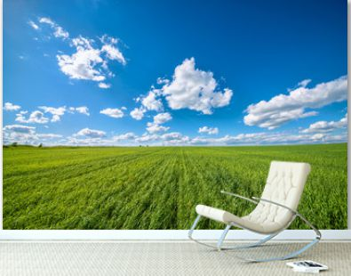 View of agricultural field with white fluffy clouds in blue sky at sunny summer day