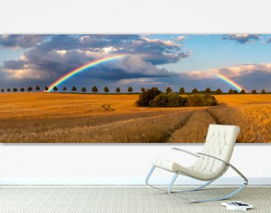 rainbow on the background of beautiful storm clouds during sunset over a field of mature cereal