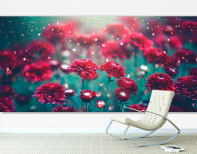 Chrysanthemum red flowers blooming in a garden. Autumn flowers art design. Nature background
