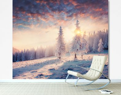 Impressive winter morning in Carpathian mountains with snow covered fir trees. Colorful outdoor scene, Happy New Year celebration concept. Artistic style post processed photo.