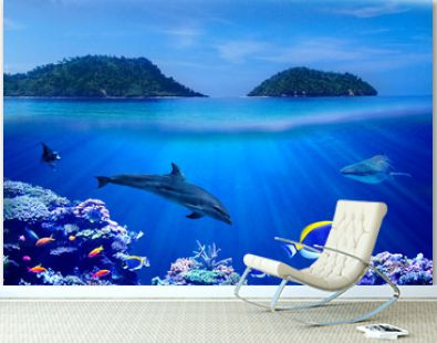 Background of Islands and underwater coral reef  with Tropical marine fish, dolphin and whale shark