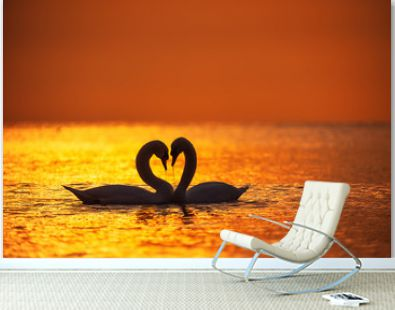 Heart shape of white swans in the sea water and beautiful sunrise