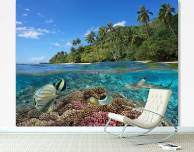French Polynesia, coral reef with colorful fish underwater and tropical coast with green vegetation, split view over and under water surface, Pacific ocean, Oceania