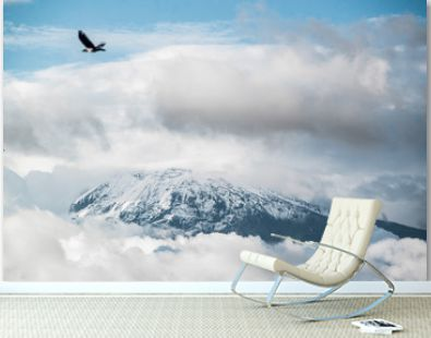 bird flying over a cloud cover mount kilimanjaro