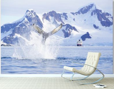 Humpback whale tale flapping in Antarctica at