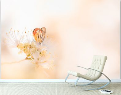 Beautiful nature view of butterfly on blurred background in garden with copy space using as background natural animal landscape, fresh wallpaper, butterflies day concept.