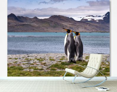 King penguins standing by the sea