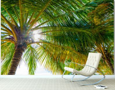 Beach summer vacation holidays background with coconut palm trees and hanging palm tree leaves