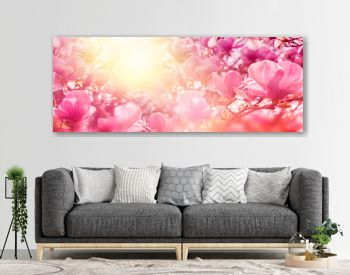 Blossoming of magnolia flowers in sun light backlit, shallow depth. Soft vintage toned. Greeting card template. Nature panorama background