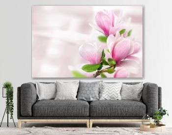 pink magnolia flowers background template