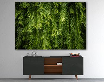 Green Leaf wall background and texture