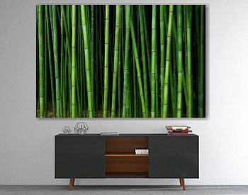 bamboo forest pattern