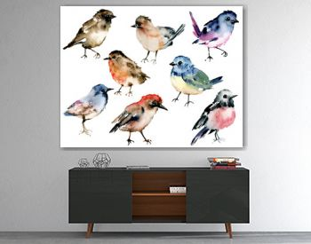 Birds, set watercolor painting. Wildlife illustration isolated on white background.