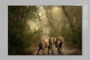 Beautiful elephant in the jungle 2