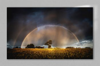 Autumn rain in the evening and full rainbow in the fields above trees.
