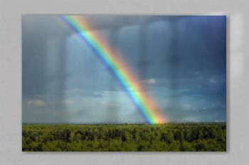 A rainbow on the horizon. seven colors of the rainbow in the sky above the forest. After the rain. Beautiful clouds.