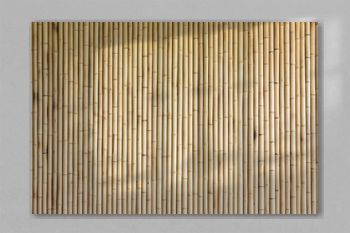 bamboo wall background