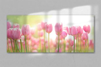 beautiful pink Tulip on blurred spring sunny background. bright pink tulip flower background for spring or love concept. beautiful natural spring scene, texture for design, copy space. banner