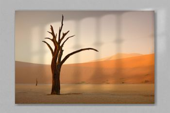 Deadvlei, orange dune with old acacia tree. African landscape from Sossusvlei, Namib desert, Namibia, Southern Africa. Red sand, biggest dun in the world. Travelling in Namibia. Sunrise, first light.