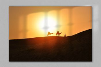Beautiful sunset with camels silhouettes in dunes at desert , Jaisalmer, India