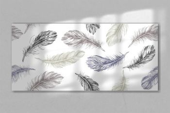 Hand drawn feather on white background.