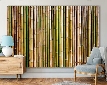 Dry bamboo tree fence wall background