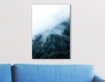 green forest in the mountains covered with dense fog
